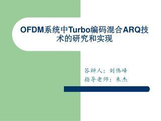 OFDM 系统中 Turbo 编码混合 ARQ 技术的研究和实现