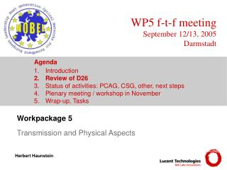 Workpackage 5  Transmission and Physical Aspects