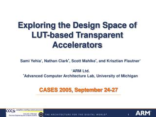 Exploring the Design Space of LUT-based Transparent Accelerators