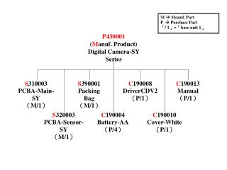 P430001 ( M anuf. Product) Digital Camera-SY Series