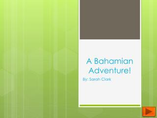 A Bahamian Adventure!
