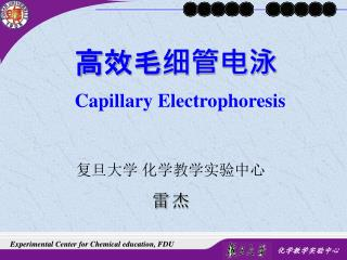 高效毛细管电泳 Capillary Electrophoresis