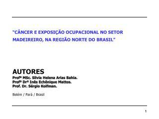 """""""CÂNCER E EXPOSIÇÃO OCUPACIONAL NO SETOR MADEIREIRO, NA REGIÃO NORTE DO BRASIL"""" AUTORES"""