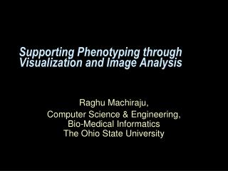 Supporting Phenotyping through Visualization and Image Analysis