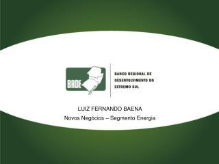 LUIZ FERNANDO BAENA Novos Negócios – Segmento Energia