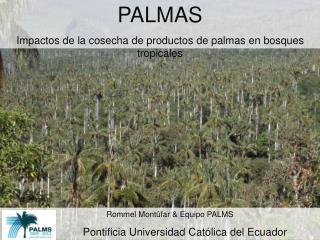 PALMAS Impactos de la cosecha de productos de palmas en bosques tropicales