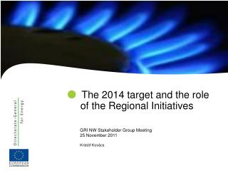 The  2014 target and the role of the Regional Initiatives