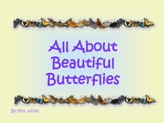 All About Beautiful Butterflies
