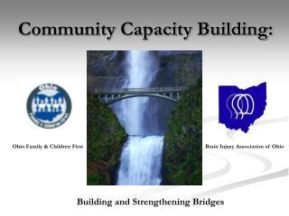 Community Capacity Building: