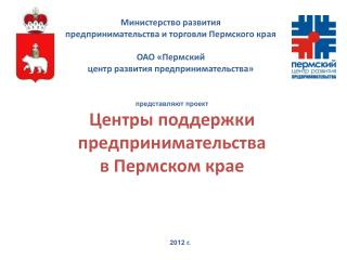 представляют проект Центры поддержки предпринимательства  в Пермском крае