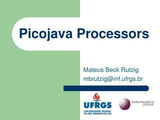 Picojava Processors
