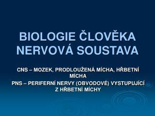 BIOLOGIE CLOVEKA NERVOV  SOUSTAVA