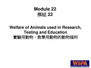 Welfare of Animals used in Research, Testing and Education 實驗用動物、教學用動物的動物福利