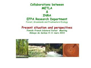 Collaborations between METLA & INRA  EFPA Research Department