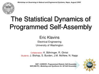 The Statistical Dynamics of Programmed Self-Assembly