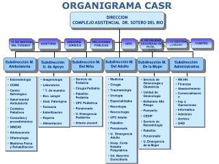 ORGANIGRAMA CASR