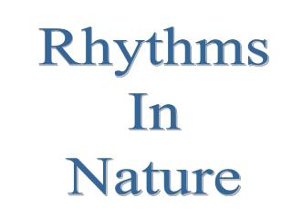 Rhythms In Nature