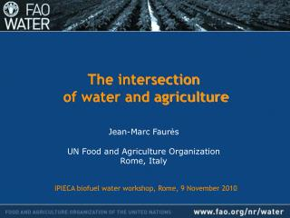 The intersection  of water and agriculture