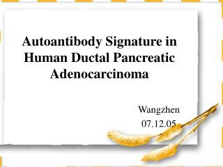 Autoantibody Signature in Human Ductal Pancreatic Adenocarcinoma