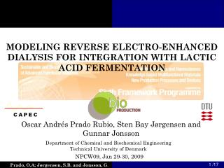 MODELING REVERSE ELECTRO-ENHANCED DIALYSIS FOR INTEGRATION WITH LACTIC ACID FERMENTATION