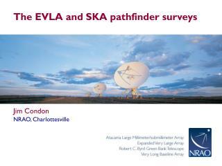 The EVLA and SKA pathfinder surveys