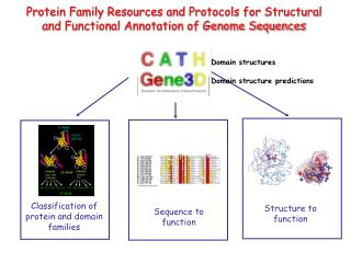 Classification of protein and domain families