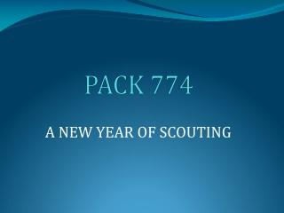 Cub Scout Basics