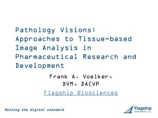 Pathology Visions:  Approaches to Tissue-based  Image Analysis in  Pharmaceutical Research and Development