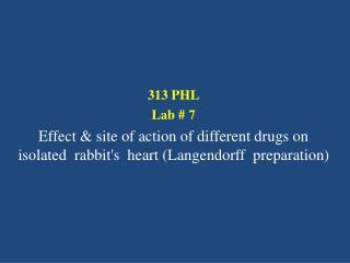 313 PHL Lab #  7