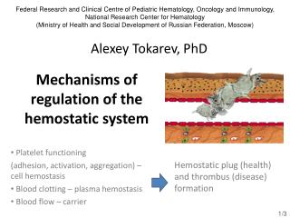 Mechanisms of regulation of the hemostatic system