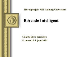 Udarbejdet i perioden: 5. marts til 3. juni 2004