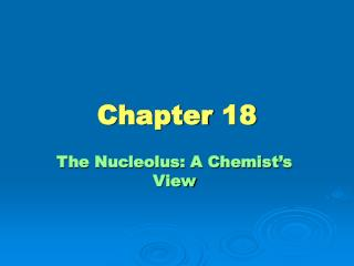 The Nucleolus: A Chemist s View