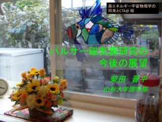 柴田 晋平 山形大学理学部