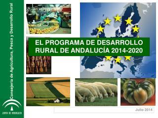 EL PROGRAMA DE DESARROLLO RURAL DE ANDALUCÍA 2014-2020