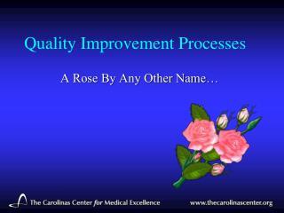 Quality Improvement Processes