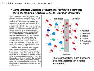 Photo caption: Schematic illustration of H 2  transport through a metal  membrane.