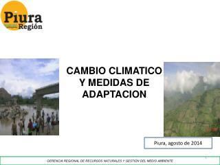 GERENCIA REGIONAL DE RECURSOS NATURALES Y GESTIÓN DEL MEDIO AMBIENTE