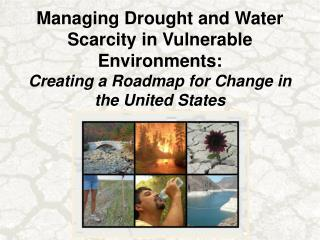 Donald A. Wilhite, Director National Drought Mitigation Center