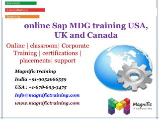 online Sap MDG training USA, UK and Canada