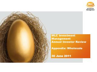 MLC Investment Management Annual Investor Review Appendix: Wholesale 30 June 2011