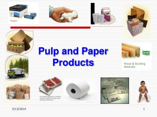 Pulp and Paper Products