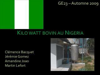 Kilo watt bovin au Nigeria