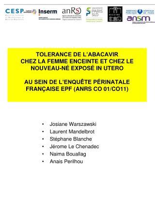 Josiane Warszawski Laurent Mandelbrot Stéphane Blanche Jérome Le Chenadec Naima Bouallag