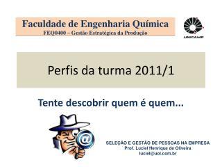 Perfis da turma 2011/1