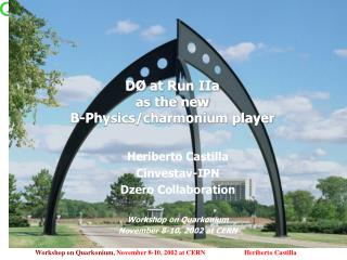 D Ø  at Run IIa  as the new  B-Physics/charmonium player