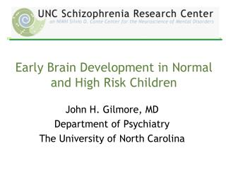 Early Brain Development in Normal and High Risk Children