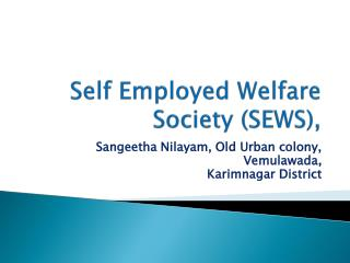 Self Employed Welfare Society (SEWS),
