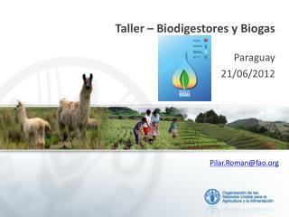 Taller – Biodigestores y Biogas