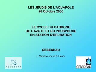 LE CYCLE DU CARBONE DE L AZOTE ET DU PHOSPHORE EN STATION D EPURATION