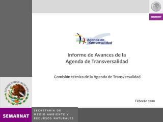 Informe de Avances de la  Agenda de Transversalidad